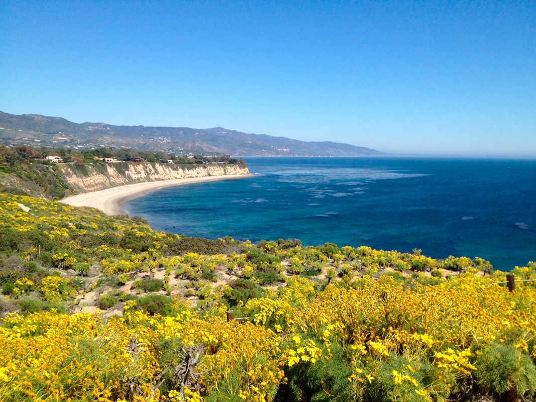 Point Dume Historical Highlights